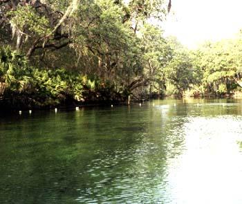 В бассейне реки Большая Собачка в Горячем Ключе найдены очередные